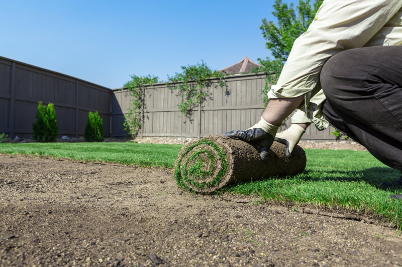 lawn-replacement-sodding-mylandscapers-landscaping-vaughan-markham-toronto-richmond-hill-sodding-sod-installation