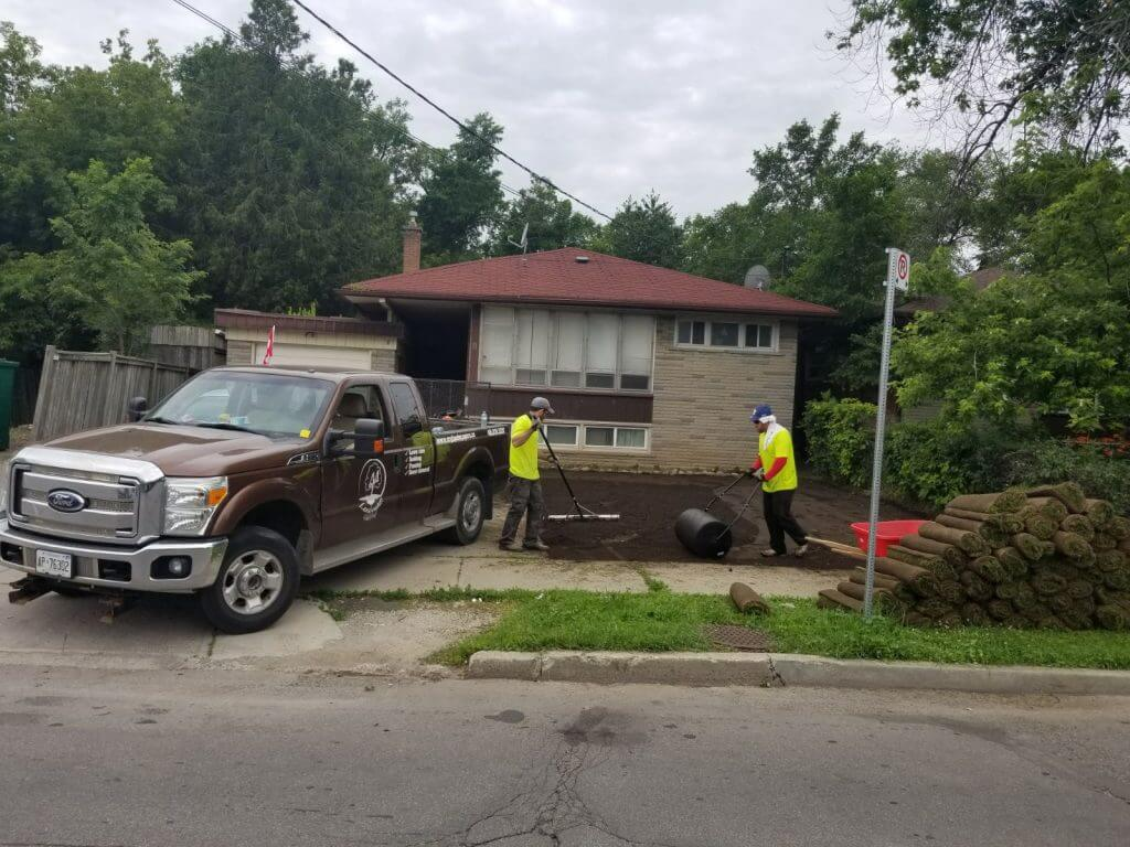 sodding-new-sod-grass-lawn-roller-my-landscapers-toronto