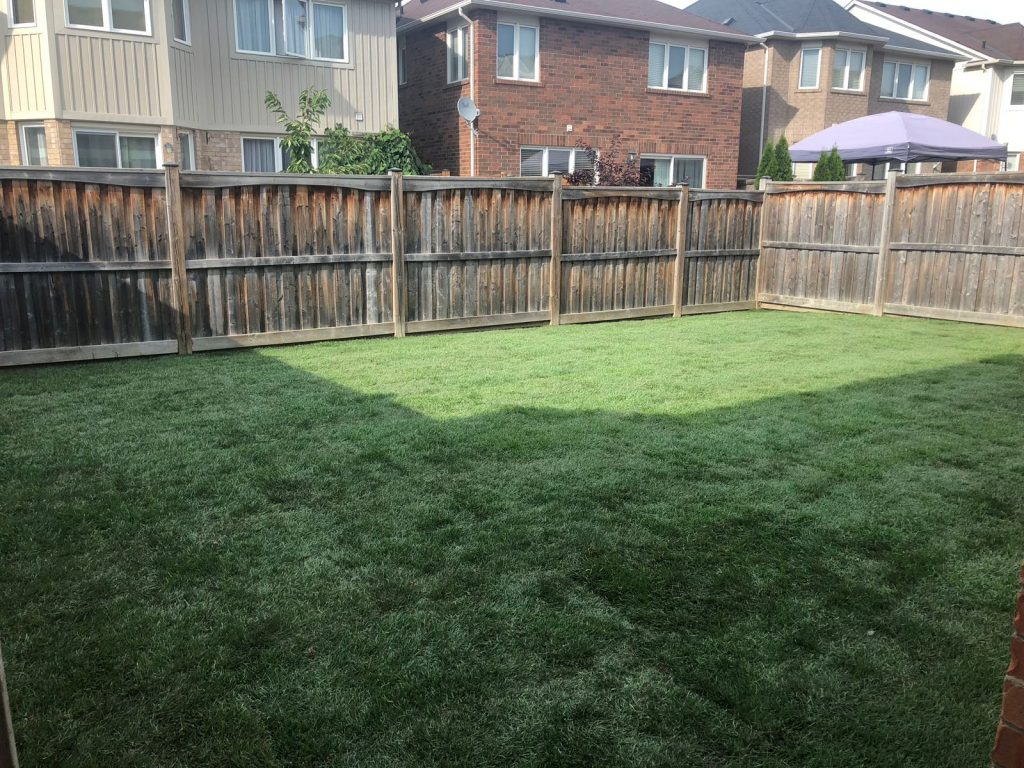 sodding-lawn-care-service-new-sod-grass-installation